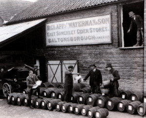 Coopering was a specialist profession and wet coopers made barrels for liquids – including these variously sized cider barrels. Lionel Hunt is wearing his long cooper's apron at the right of this seemingly heavily posed picture. He was a wet cooper at Baltonsborough from the age of 24.