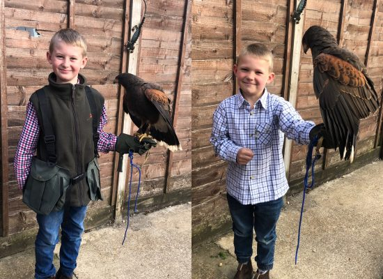 the boys after broadlands country show trying out there new gloves with there harris hawk