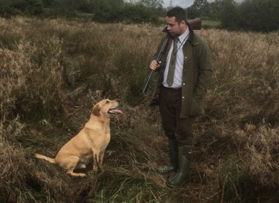 An exceptional gun dog Harvey