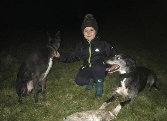 Ieuan and his dogs